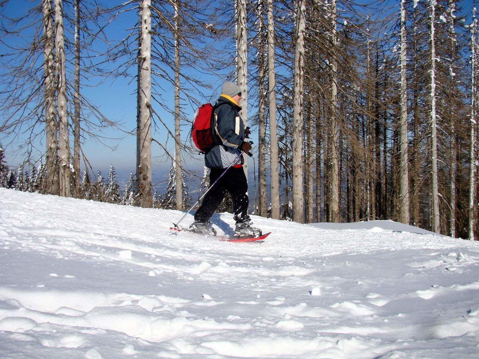 Winterurlaub Bodenmais Bayerischer Wald Grosser Arber Skigebiet